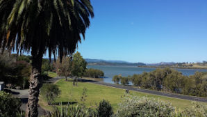 Saratoga Rabbis Report from New Zealand