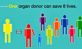 Why I'm a proud Jewish organ donor