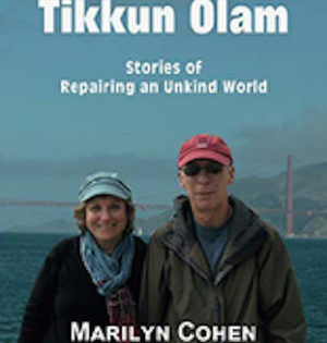 Tikkun Olam is focus of Shapiro's new column compilation