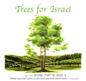 Building Israel and battling terrorism, one tree at a time